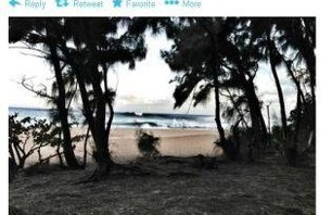 The Twitter Snap: The Latest and Most Interesting Tweets from Pro Surfers Photo 0005