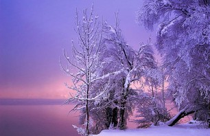 18 Phenominal Winter Wonderlands Photo 0008