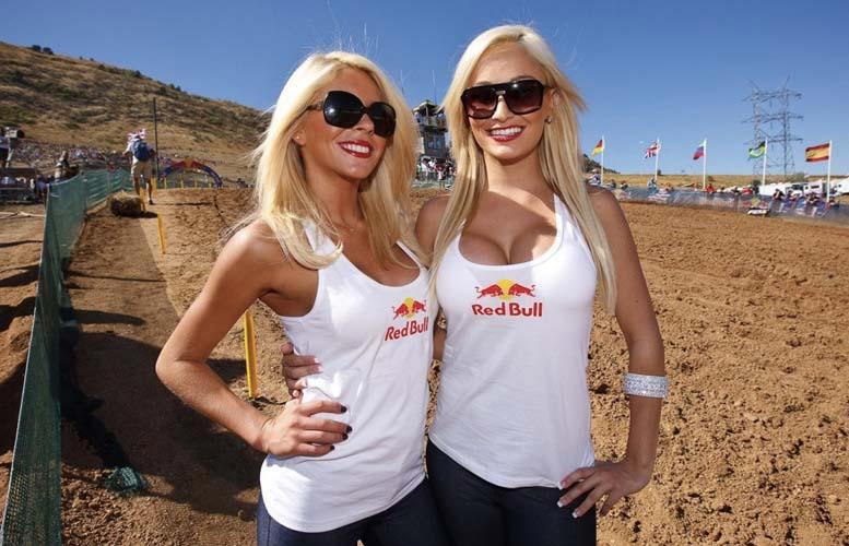 Red Bull Girls Gallery - Part 2