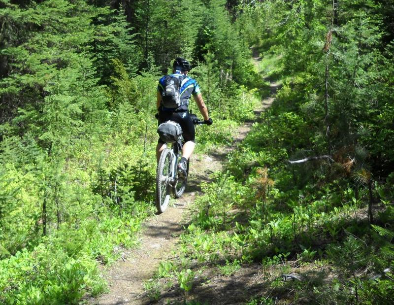 Tour Divide Mountain Bike Race