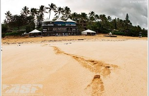 Billabong Pipe Masters - Down Day Photo 0002