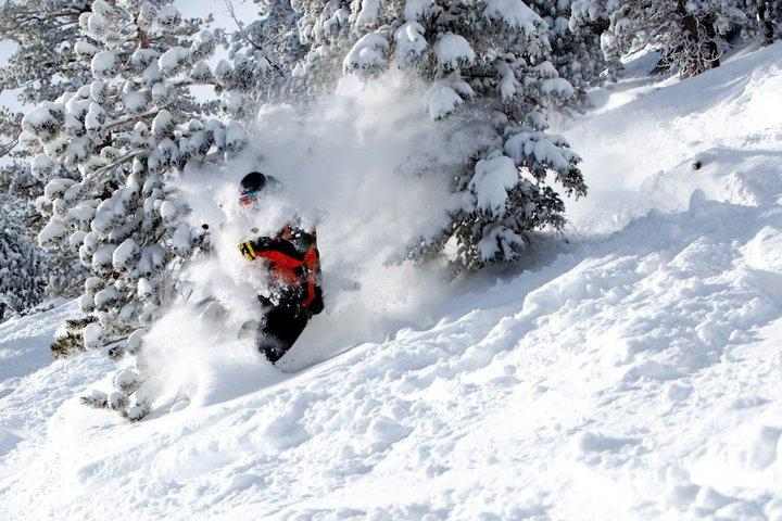 Mammoth Unbound Pow Day - January 4th