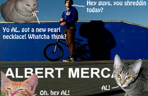 SBL Edit Featuring The Laziest House Cat In BMX!