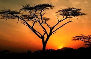 14 Amazing Sunsets from Around the Globe Photo 0008