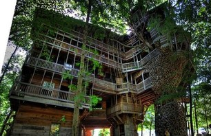 The Minister's Treehouse Photo 0001