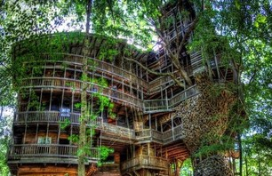 The Minister's Treehouse Photo 0003