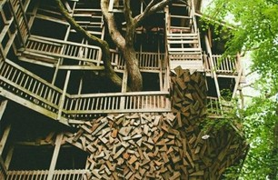 The Minister's Treehouse Photo 0004