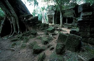 Abandoned Ta Prohm Temple in Middle of Jungle Photo 0004