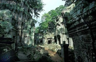 Abandoned Ta Prohm Temple in Middle of Jungle Photo 0011