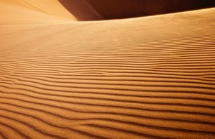 Namib Desert Dunescapes Photo 0003