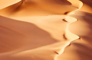 Namib Desert Dunescapes Photo 0010