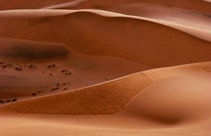 Namib Desert Dunescapes Photo 0011