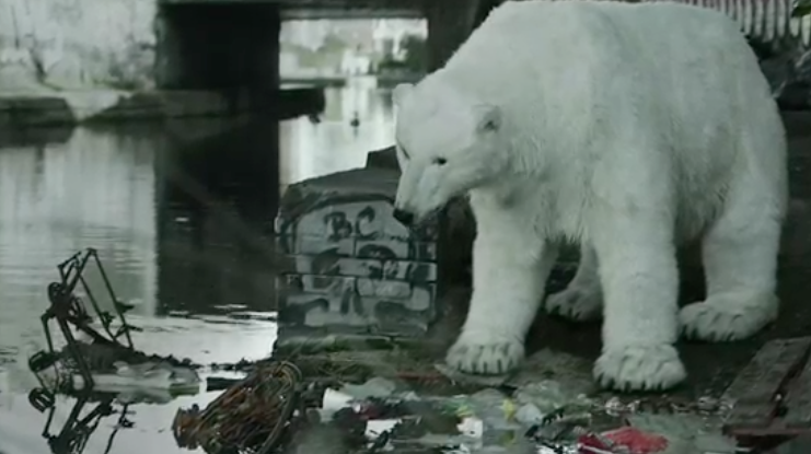 Video of the Day: A Homeless Polar Bear in London