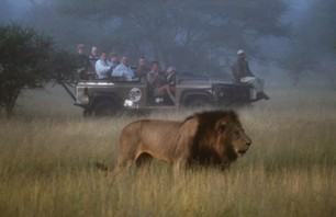 Week Trip: South African Safari and Football