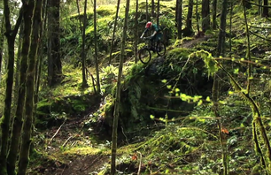 Lush Downhill MTB in Vancouver Island